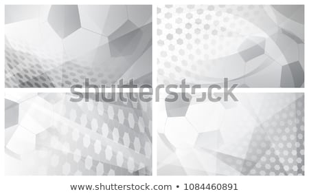 soccer game banner with german flag and soccer ball Stock photo © djdarkflower