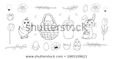 Packing eggs hatched chicken isolated. Vector illustration Stock photo © popaukropa