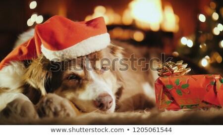 christmas · partij · nieuwjaar · groet · briefkaart · kunst - stockfoto © colematt