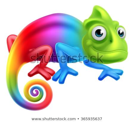 Bukalemun karikatür kertenkele karakter yeşil Stok fotoğraf © Krisdog
