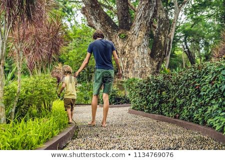 Father and son Walking On A Textured Cobble Pavement, Reflexology. Pebble stones on the pavement for Stock photo © galitskaya