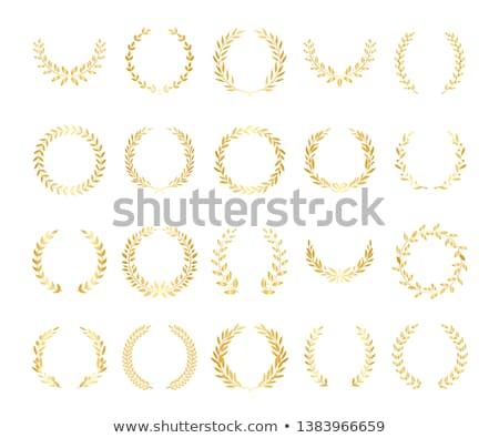 Keret arany babér szett illusztráció körkörös Stock fotó © Blue_daemon