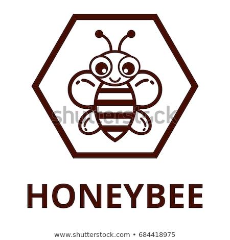 amarelo · bonitinho · abelha · conjunto · ilustração - foto stock © Blue_daemon