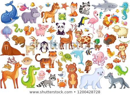 Marine Life Animals Cartoon Set Stock photo © patrimonio