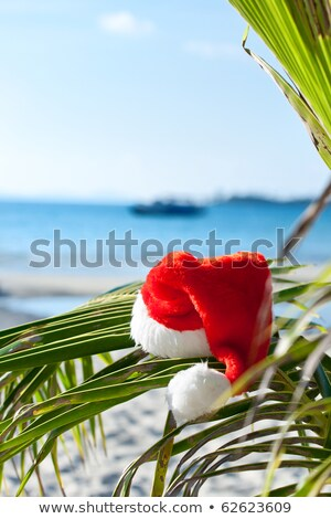 Red Santa's hat hanging on palm tree at the tropical beach. Christmas in tropical climate concept Stock photo © galitskaya