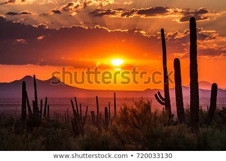 Аризона закат красный центральный природы фон Сток-фото © diomedes66