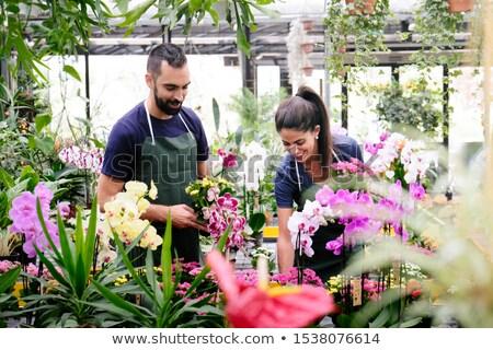 Travail d'équipe heureux travaux fleuriste magasin Photo stock © diego_cervo