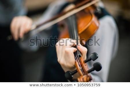 Közelkép profi hegedű kezek kicsi hegedűművész Stock fotó © brebca