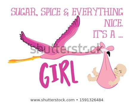 Zucker Gewürz nice Mädchen funny Flamingo Stock foto © Zsuskaa