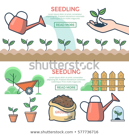 Seed bag. Outline icon. Gardening vector illustration Stock photo © Imaagio