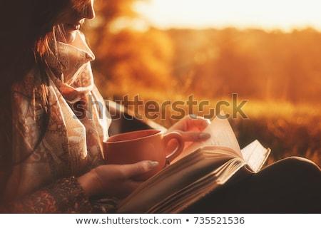 Foto stock: Bela · mulher · leitura · livro · parque · belo · caucasiano