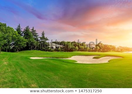 ゴルフ · 砂 · トラップ · 緑の草 · ツリー · スポーツ - ストックフォト © jamdesign