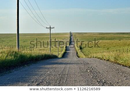 草原 砂利道 小槌 道路 ストレッチング オフ ストックフォト © SimpleFoto