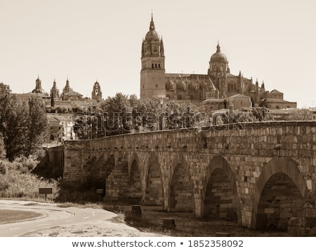 Baroque sandstoned cathedral Stock photo © CaptureLight