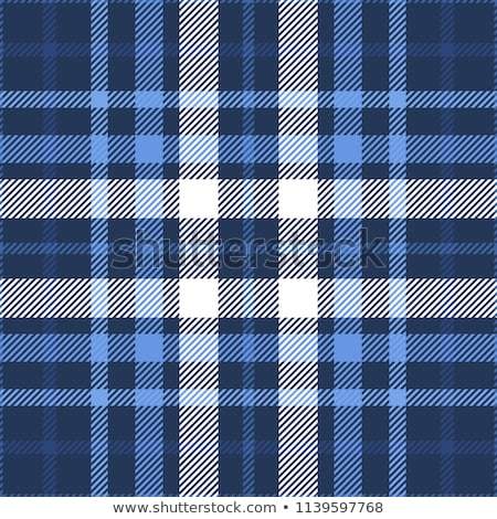 Plaid blue patterns stock photo © Losswen