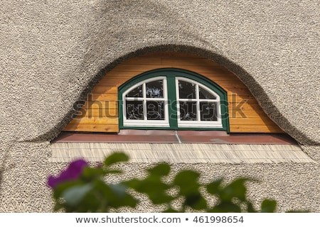 House with a roof of reeds in the meadow Stock photo © Borissos