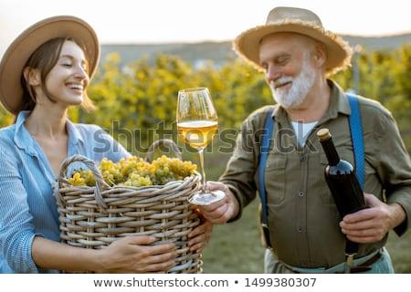 Homem mulher uvas vinha natureza Foto stock © photography33