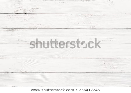 White wood texture (vector) Stock photo © IMaster