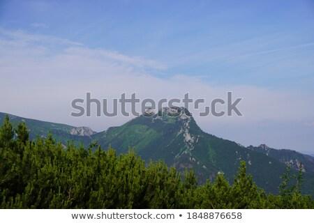 Giewont mountain in the distance Stock photo © marekusz