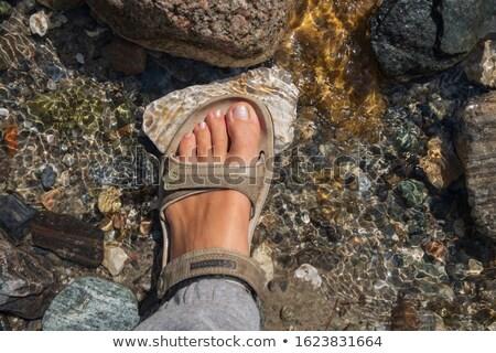 summer women's sandals on the sand Stock photo © tarczas