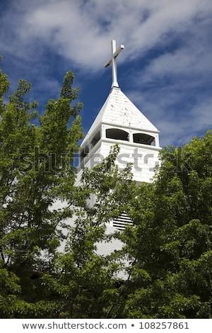 Católico iglesia centro de la ciudad árbol ciudad verano Foto stock © benkrut