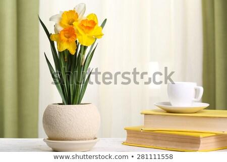 Topf gelbe Blume Fenster Fensterbank Girlande Spielzeug Stock foto © Toivo