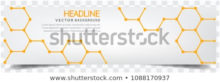 Bee Hive Background Stock photo © lenm