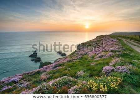 драматический океана небе Корнуолл после полудня свет Сток-фото © mosnell
