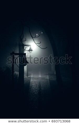 foggy park path stock photo © mike_expert
