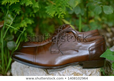 smart and comfortable men shoe in genuine black leather stock photo © johnkasawa