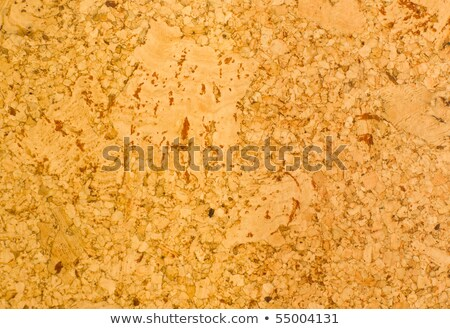 Ceder wood chip. Stock photo © snyfer