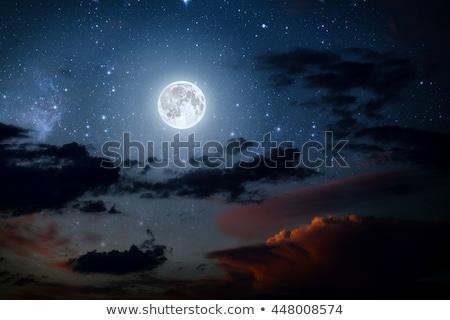 halloween night with full moon stock photo © beholdereye