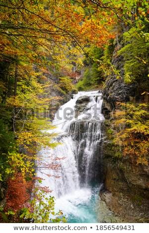 cascada del estrecho waterfall in ordesa valley pyrenees spain stock photo © lunamarina