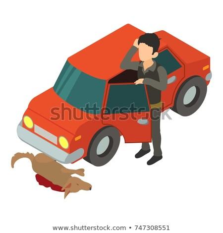 Cane auto crash bianco nero cartoon illustrazione Foto d'archivio © derocz