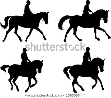 силуэта · небе · лошади · работает · только · человек - Сток-фото © valkos