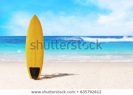 Meisje surfen boord strand eps10 geïsoleerd Stockfoto © Aleksangel