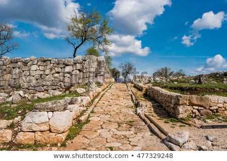 ancient roman road stock photo © searagen