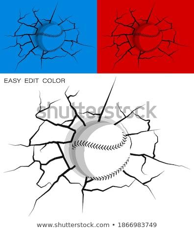 beysbol · top · vektör · görüntü · karikatür - stok fotoğraf © timurock