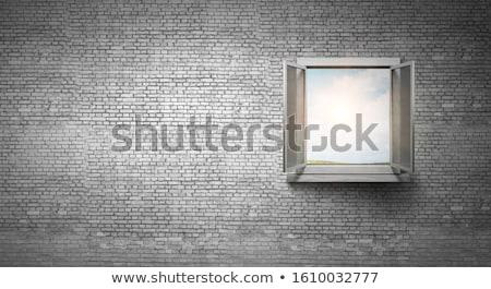 Window of opportunity Stock photo © andromeda