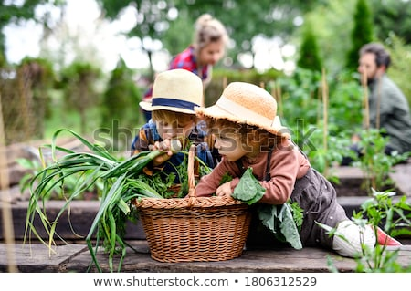 Woman working on allotment with child Stock photo © monkey_business