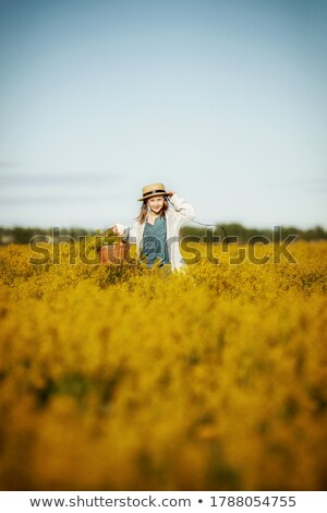 Beauty little girl rape field bouquet hand Stock photo © fotoaloja