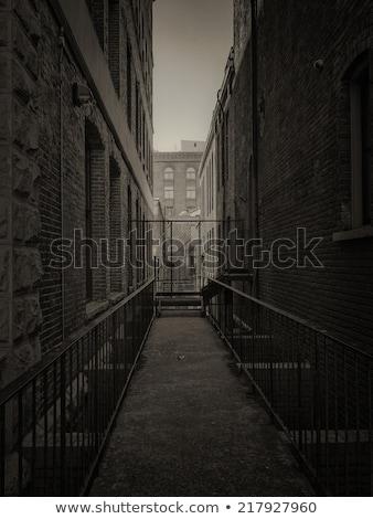 iron door in a dark alley Stock photo © marunga