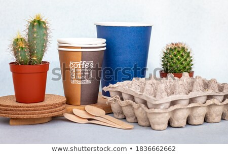 Cacto planta plástico copo Foto stock © aza