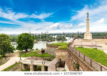 Szobor győztes tájékozódási pont szimbólum Belgrád Szerbia Stock fotó © gavran333