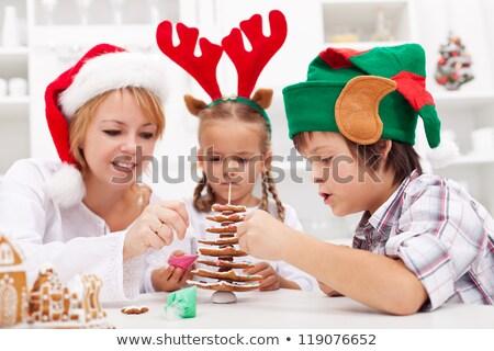 Woman Elf Cooking Stock photo © nruboc