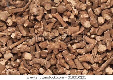 Organic Ganthoda or Long pepper Roots. Stock photo © ziprashantzi