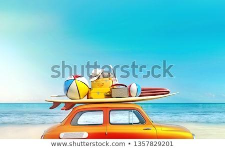 Kész szörf gyönyörű fiatal szörfös lány Stock fotó © iko