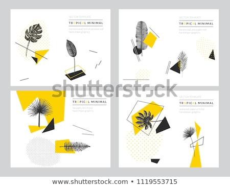 Jungle poster. Fern frond background. Vector illustration. Stock photo © gladiolus