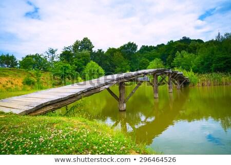 smal old wooden bridge over mountain creek stock photo © zurijeta