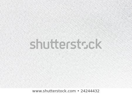 Texture coton tissu cellule résumé mode Photo stock © OleksandrO